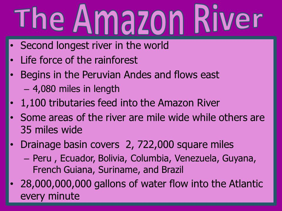Second longest river in the world Life force of the rainforest Begins in the Peruvian Andes and flows east – 4,080 miles in length 1,100 tributaries feed into the Amazon River Some areas of the river are mile wide while others are 35 miles wide Drainage basin covers 2, 722,000 square miles – Peru, Ecuador, Bolivia, Columbia, Venezuela, Guyana, French Guiana, Suriname, and Brazil 28,000,000,000 gallons of water flow into the Atlantic every minute