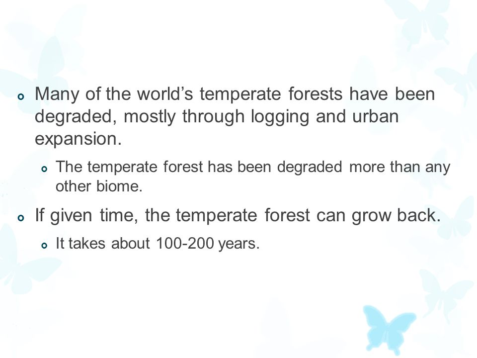  Many of the world's temperate forests have been degraded, mostly through logging and urban expansion.  The temperate forest has been degraded more