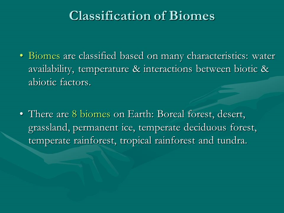 Distribution of Biomes Temperature & precipitation are 2 of the most important abiotic factors in identifying biomes.Temperature & precipitation are 2 of the most important abiotic factors in identifying biomes.
