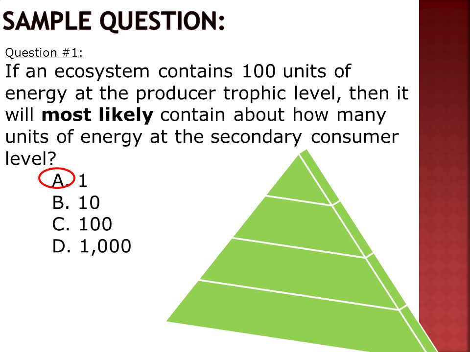 Question #1: If an ecosystem contains 100 units of energy at the producer trophic level, then it will most likely contain about how many units of energy at the secondary consumer level.