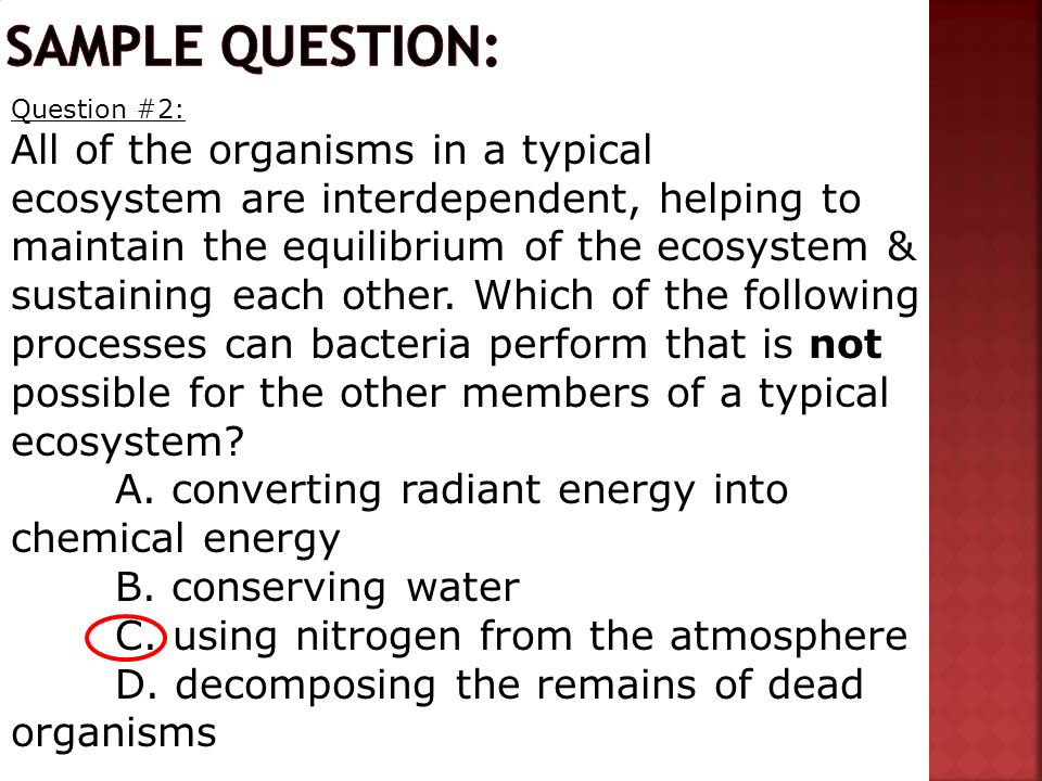 Question #2: All of the organisms in a typical ecosystem are interdependent, helping to maintain the equilibrium of the ecosystem & sustaining each ot