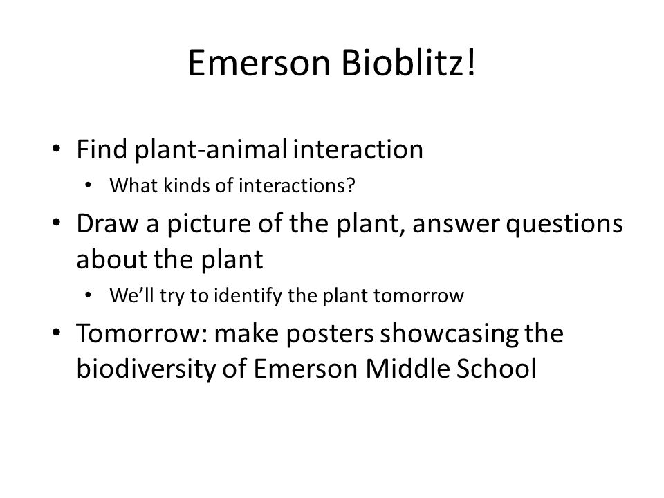 Emerson Bioblitz. Find plant-animal interaction What kinds of interactions.