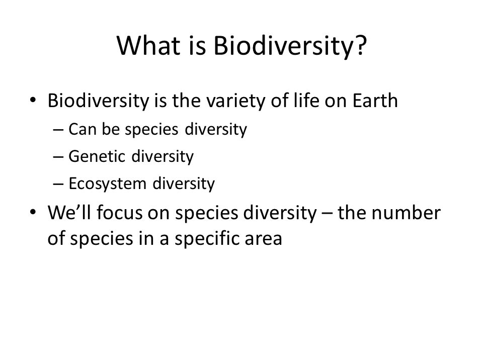 Credits Slide 1: http://www-images.warwick.ac.uk/about/environment/faqs/biodiversity.jpg and http://news.softpedia.com/images/news2/Why-Is-Biodiversity-Essential-for-Human-Life-4.jpghttp://www-images.warwick.ac.uk/about/environment/faqs/biodiversity.jpg http://news.softpedia.com/images/news2/Why-Is-Biodiversity-Essential-for-Human-Life-4.jpg Slide 2: : http://www-images.warwick.ac.uk/about/environment/faqs/biodiversity.jpghttp://www-images.warwick.ac.uk/about/environment/faqs/biodiversity.jpg Slide 3: http://i1.treknature.com/photos/9272/200th_with_biodiversity.jpghttp://i1.treknature.com/photos/9272/200th_with_biodiversity.jpg Slide 6: http://pulse.pharmacy.arizona.edu/10th_grade/disease_epidemics/science/images/Insect-diversity.gifhttp://pulse.pharmacy.arizona.edu/10th_grade/disease_epidemics/science/images/Insect-diversity.gif Slide 7: http://www.epa.qld.gov.au/images/nature_conservation/marine_habitat.jpg and http://www.casarioblanco.com/rainforest.html and http://www.ohiomm.com/blogs/mcmanamon/wp- content/uploads/2008/06/arctic.jpghttp://www.epa.qld.gov.au/images/nature_conservation/marine_habitat.jpg http://www.casarioblanco.com/rainforest.htmlhttp://www.ohiomm.com/blogs/mcmanamon/wp- content/uploads/2008/06/arctic.jpg Slide 8: http://www.environorth.org.au/wa/or/images/Amphibian_Diversity.jpghttp://www.environorth.org.au/wa/or/images/Amphibian_Diversity.jpg Slide 9: http://newsimg.bbc.co.uk/media/images/45079000/gif/_45079056_ee75956b-535c-4afc-bd27-31daf1442737.gifhttp://newsimg.bbc.co.uk/media/images/45079000/gif/_45079056_ee75956b-535c-4afc-bd27-31daf1442737.gif Slide 12: http://www.fairburnschool.org/announcements/assets/EmersonUni.jpg and http://upload.wikimedia.org/wikipedia/commons/9/9d/Emerson_Middle_School.jpghttp://www.fairburnschool.org/announcements/assets/EmersonUni.jpg http://upload.wikimedia.org/wikipedia/commons/9/9d/Emerson_Middle_School.jpg