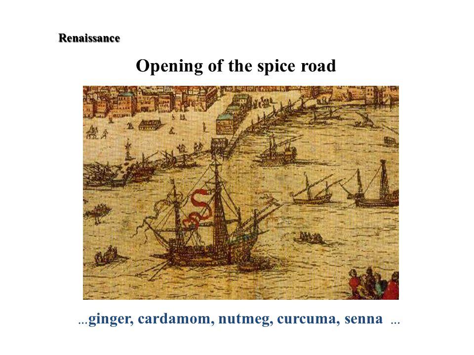 Renaissance Renaissance Opening of the spice road … ginger, cardamom, nutmeg, curcuma, senna …