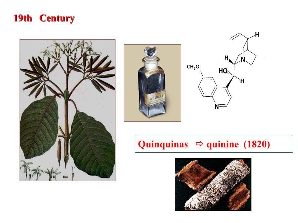 CH 3 O 19th Century Quinquinas  quinine (1820)