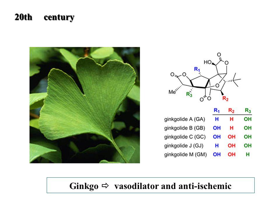 Ginkgo  vasodilator and anti-ischemic 20th century 20th century