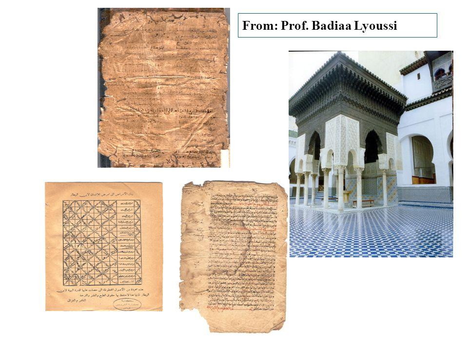 From: Prof. Badiaa Lyoussi