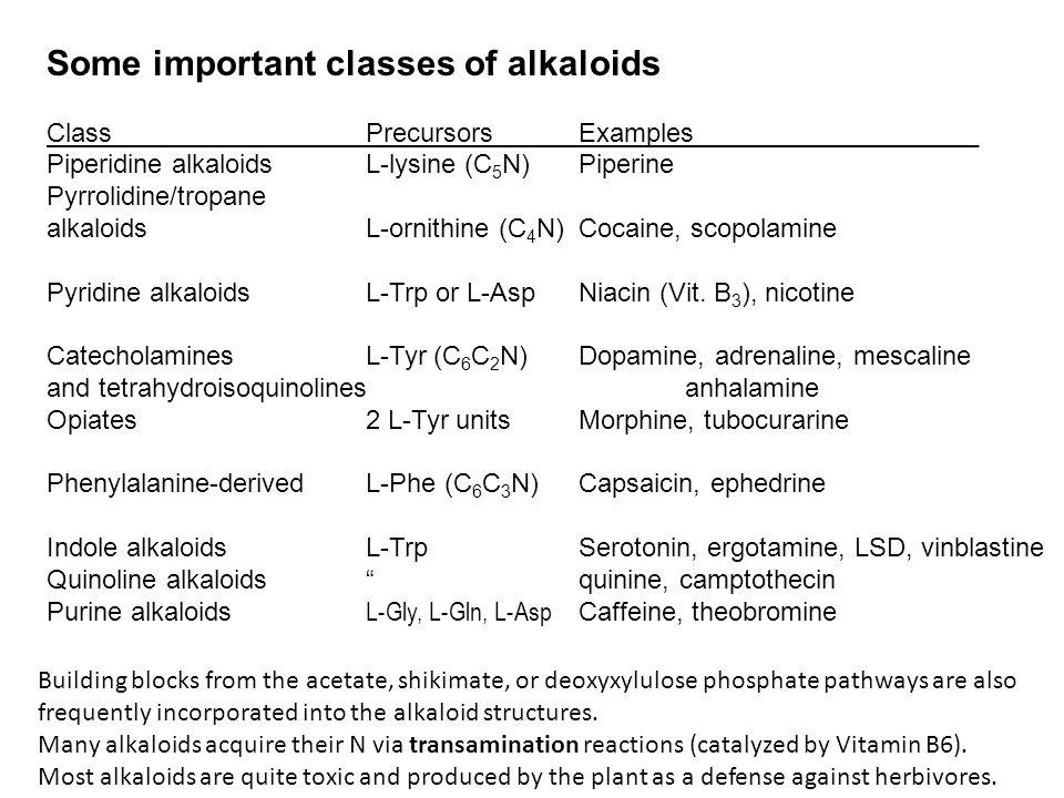 Some important classes of alkaloids ClassPrecursorsExamples_____________ Piperidine alkaloidsL-lysine (C 5 N)Piperine Pyrrolidine/tropane alkaloidsL-ornithine (C 4 N)Cocaine, scopolamine Pyridine alkaloidsL-Trp or L-AspNiacin (Vit.