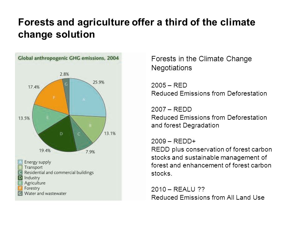 Forests and agriculture offer a third of the climate change solution Forests in the Climate Change Negotiations 2005 – RED Reduced Emissions from Defo