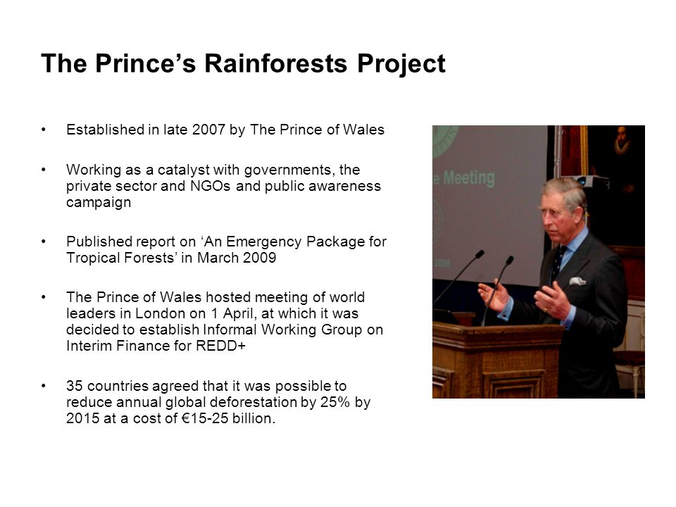 The Prince's Rainforests Project Established in late 2007 by The Prince of Wales Working as a catalyst with governments, the private sector and NGOs a