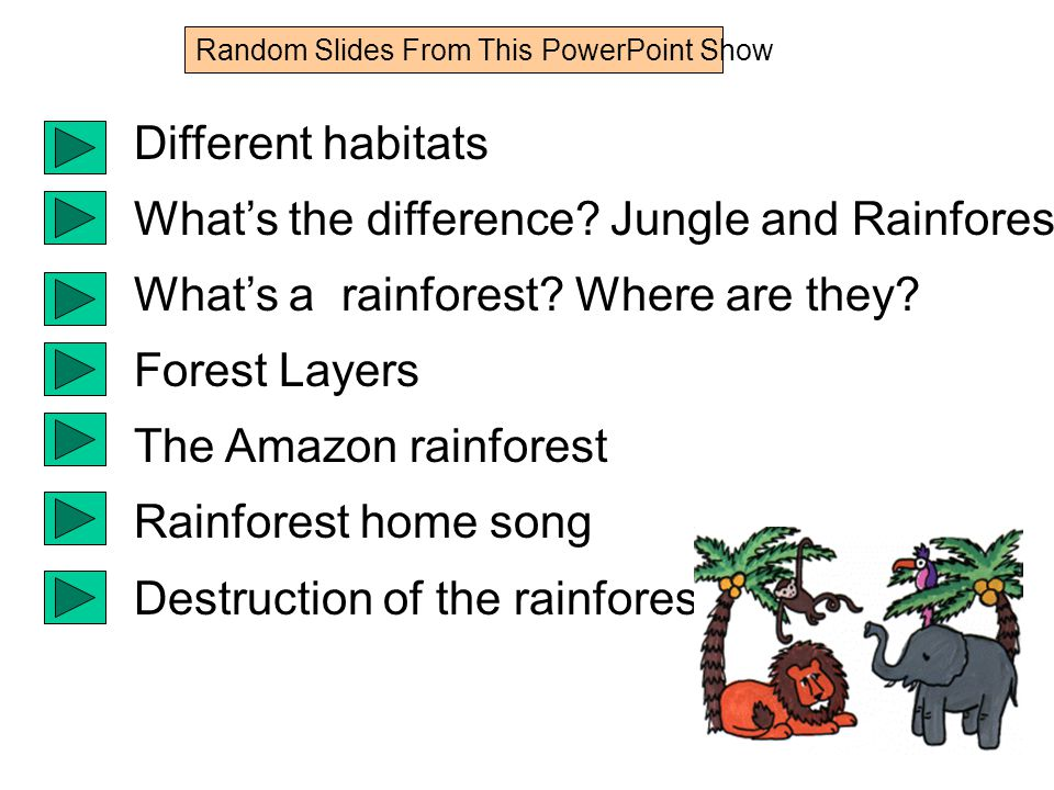 Different habitats What's the difference. Jungle and Rainforest What's a rainforest.