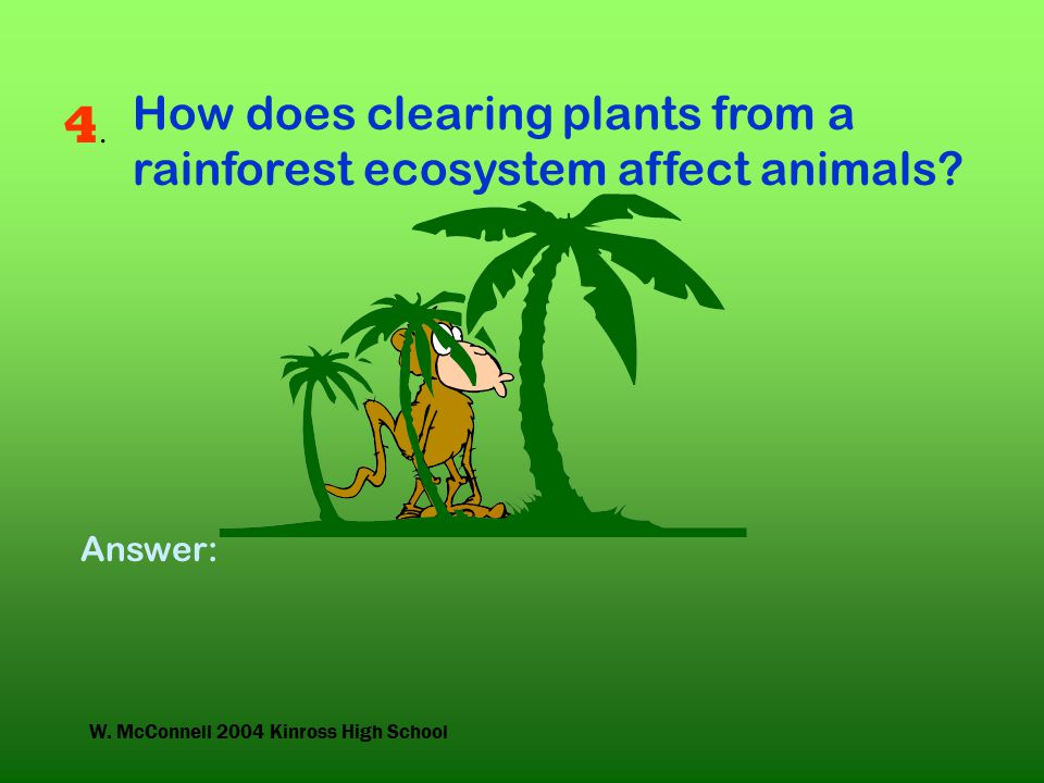 W. McConnell 2004 Kinross High School 4.4. How does clearing plants from a rainforest ecosystem affect animals? Answer:
