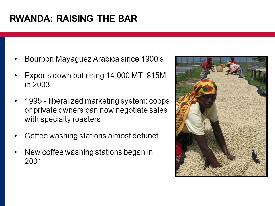 RWANDA: RAISING THE BAR Bourbon Mayaguez Arabica since 1900's Exports down but rising 14,000 MT, $15M in 2003 1995 - liberalized marketing system: coops or private owners can now negotiate sales with specialty roasters Coffee washing stations almost defunct New coffee washing stations began in 2001