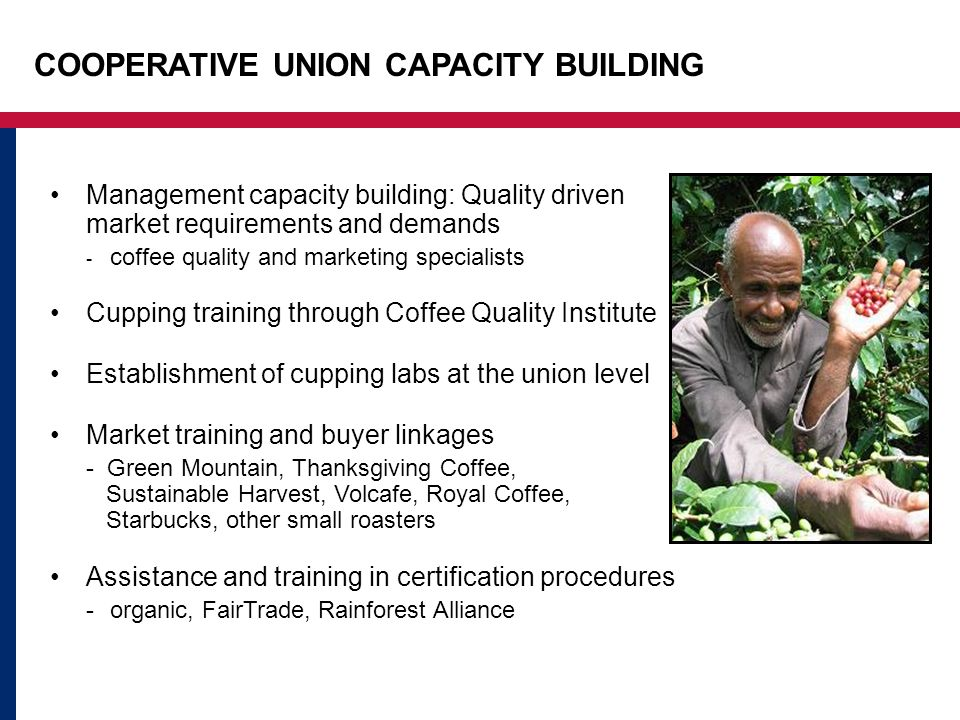 COOPERATIVE UNION CAPACITY BUILDING Management capacity building: Quality driven market requirements and demands - coffee quality and marketing specialists Cupping training through Coffee Quality Institute Establishment of cupping labs at the union level Market training and buyer linkages - Green Mountain, Thanksgiving Coffee, Sustainable Harvest, Volcafe, Royal Coffee, Starbucks, other small roasters Assistance and training in certification procedures -organic, FairTrade, Rainforest Alliance