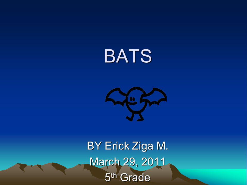 BATS BY Erick Ziga M. March 29, 2011 5 th Grade