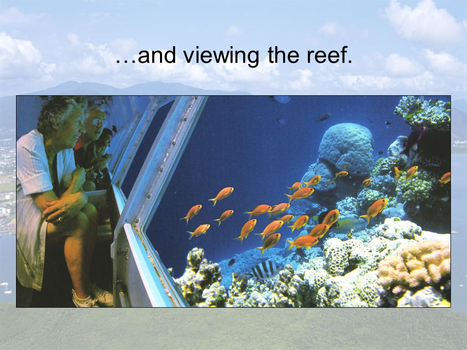 …and viewing the reef.