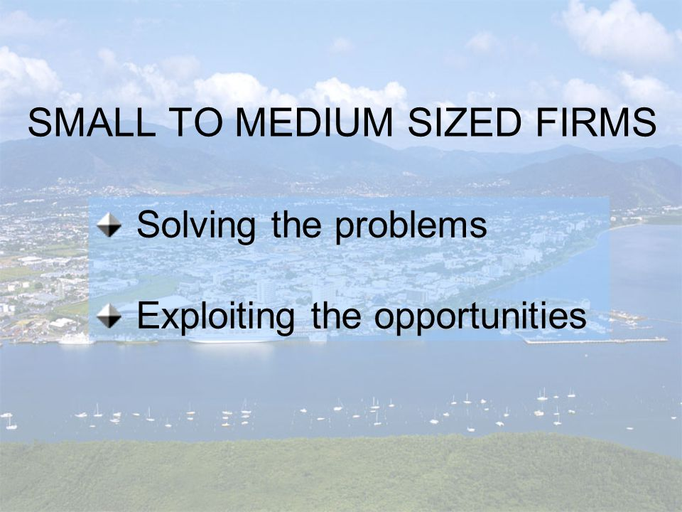 SMALL TO MEDIUM SIZED FIRMS Solving the problems Exploiting the opportunities