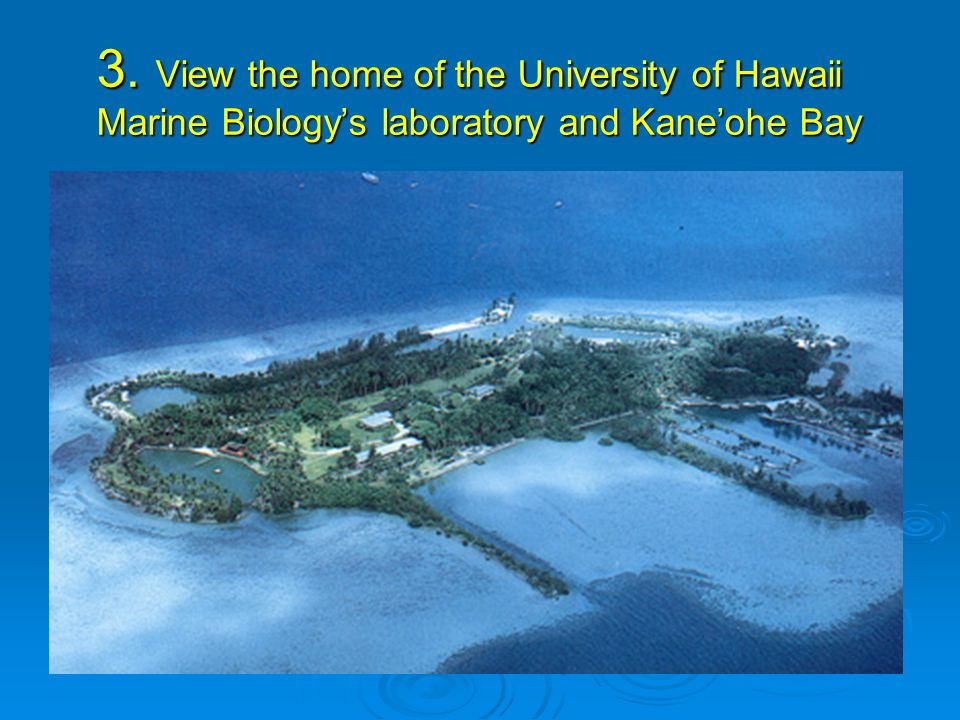 3. View the home of the University of Hawaii Marine Biology's laboratory and Kane'ohe Bay