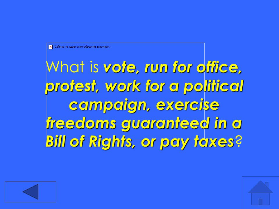 vote, run for office, protest, work for a political campaign, exercise freedoms guaranteed in a Bill of Rights, or pay taxes What is vote, run for office, protest, work for a political campaign, exercise freedoms guaranteed in a Bill of Rights, or pay taxes