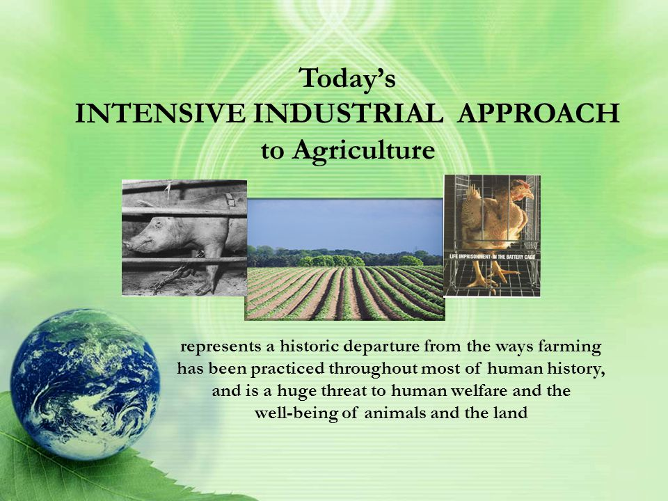 Today's INTENSIVE INDUSTRIAL APPROACH to Agriculture represents a historic departure from the ways farming has been practiced throughout most of human history, and is a huge threat to human welfare and the well-being of animals and the land