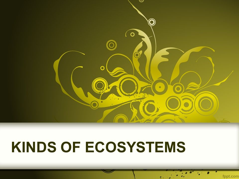 DESERT ECOSYSTEMS Deserts, like forests and grasslands, occur all around the world.
