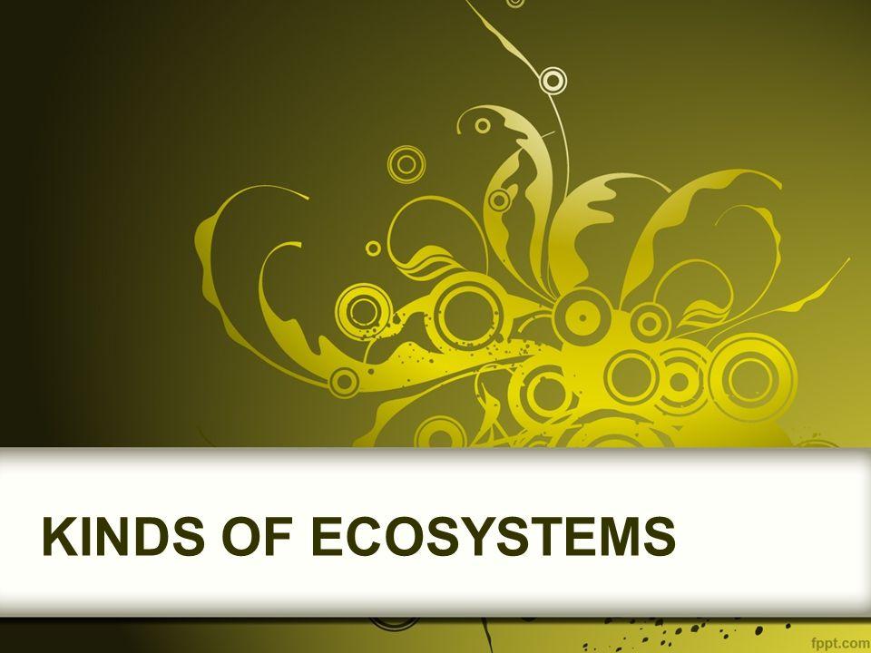 Types of Ecosystems Terrestrial EcosystemsAquatic Ecosystems ForestsPond GrasslandsLake DesertsWetland MountainsRiver IslandsDelta
