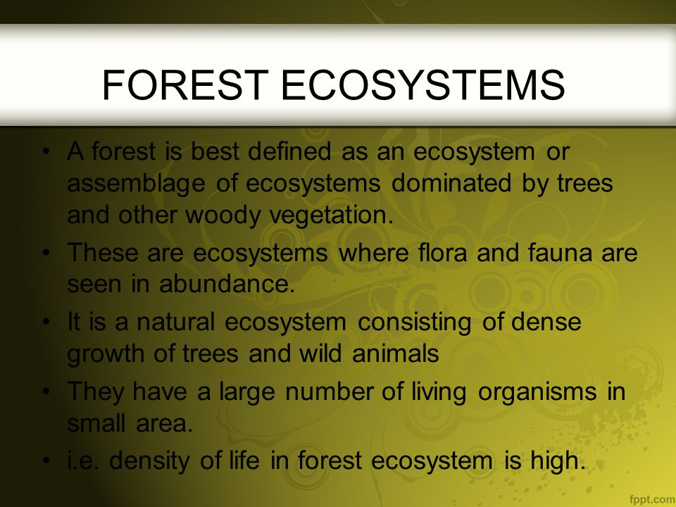 The forest ecosystem has two parts: The non-living or abiotic aspects of the forest The living or the biotic aspects of the forest The type of forest depends upon the abiotic conditions at the site.