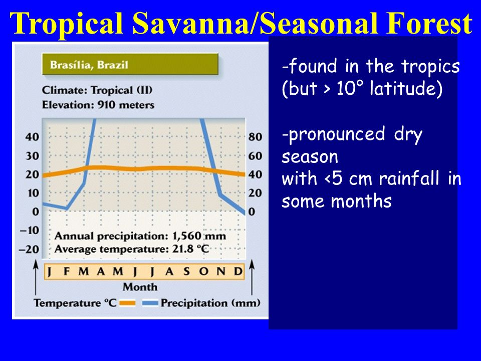 -found in the tropics (but > 10° latitude) -pronounced dry season with <5 cm rainfall in some months Tropical Savanna/Seasonal Forest