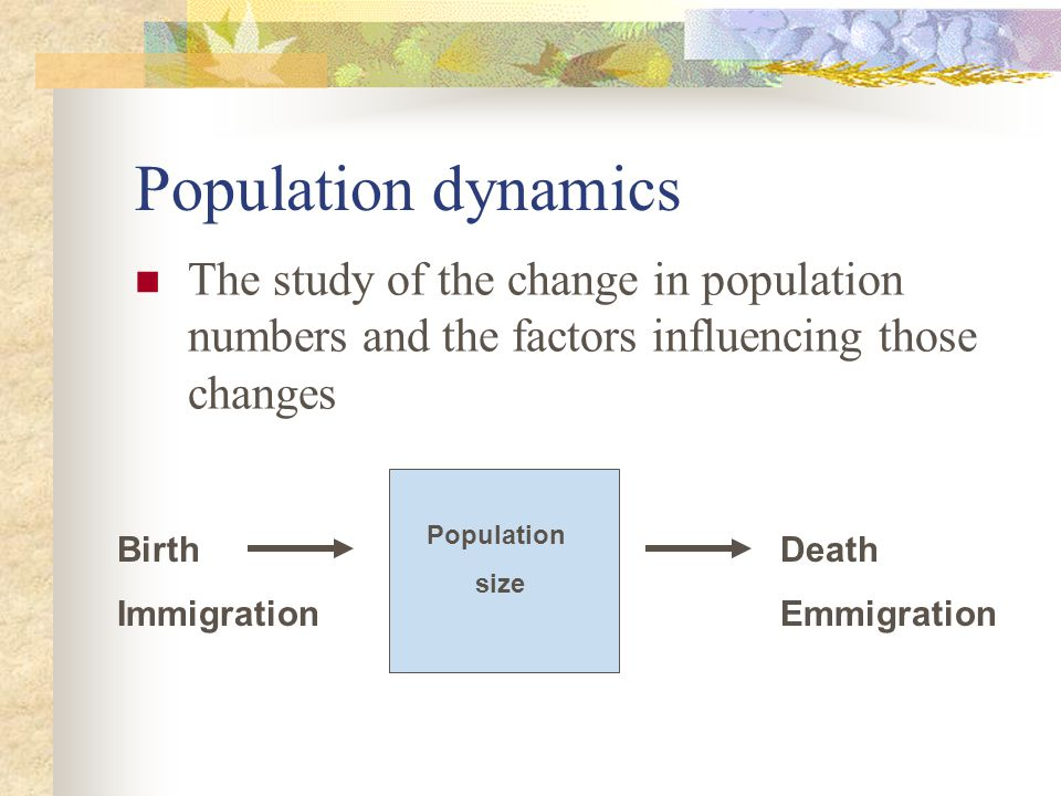 Models of Population Growth Exponential Growth Birth exceeds death Population Size Explodes