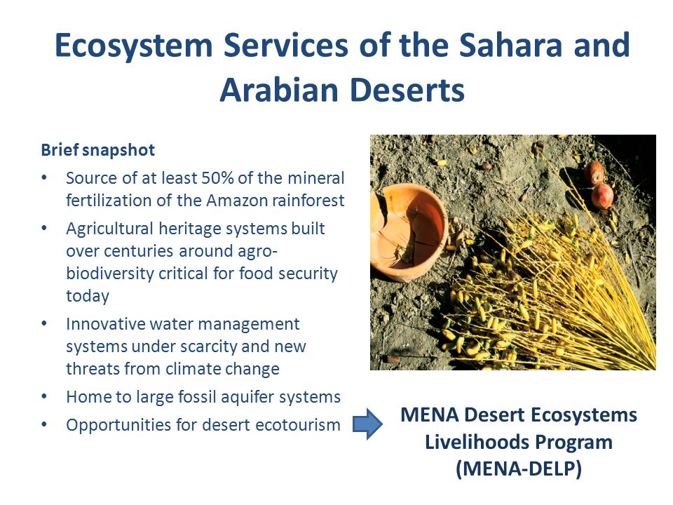 Ecosystem Services of the Sahara and Arabian Deserts Brief snapshot Source of at least 50% of the mineral fertilization of the Amazon rainforest Agricultural heritage systems built over centuries around agro- biodiversity critical for food security today Innovative water management systems under scarcity and new threats from climate change Home to large fossil aquifer systems Opportunities for desert ecotourism MENA Desert Ecosystems Livelihoods Program (MENA-DELP)