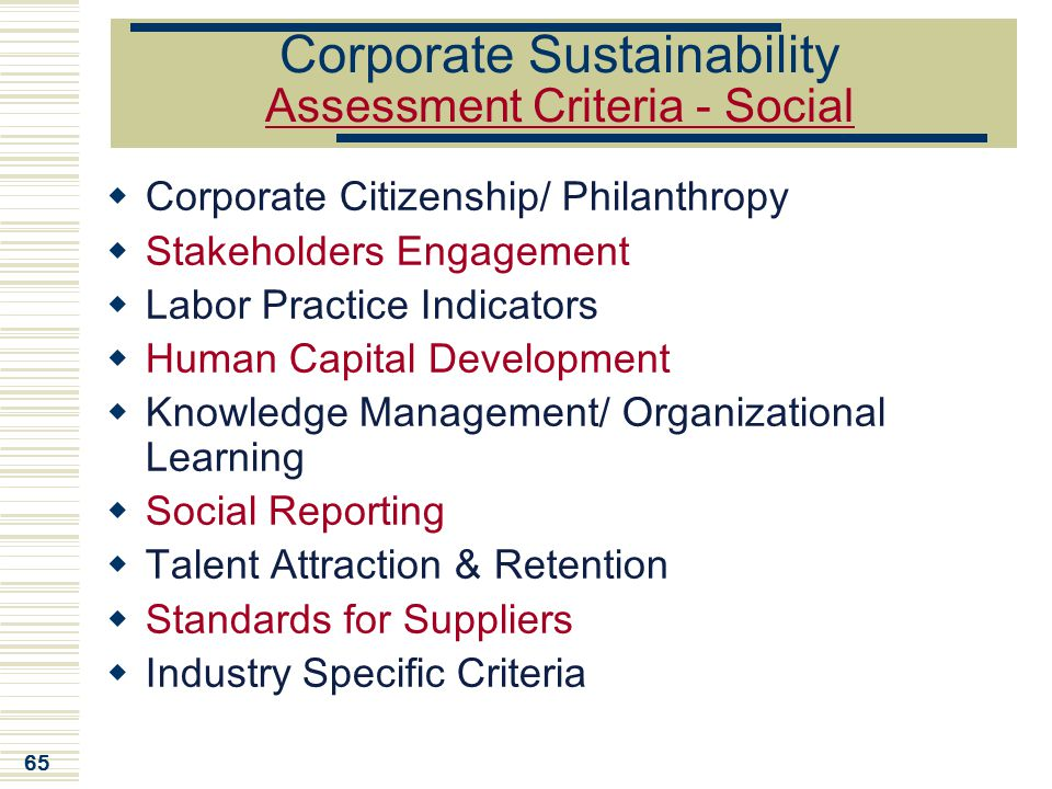 65 Corporate Sustainability Assessment Criteria - Social  Corporate Citizenship/ Philanthropy  Stakeholders Engagement  Labor Practice Indicators 