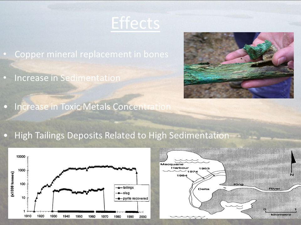 Effects Increase in Sedimentation Increase in Toxic Metals Concentration High Tailings Deposits Related to High Sedimentation Copper mineral replaceme