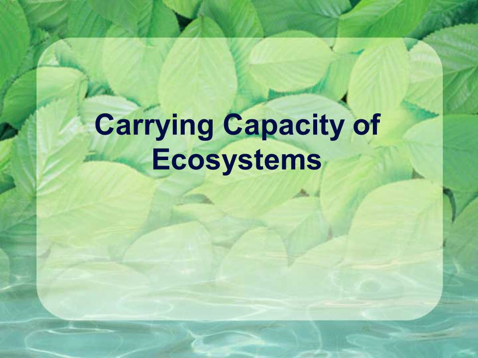 How do Invasive Species infiltrate new ecosystems.