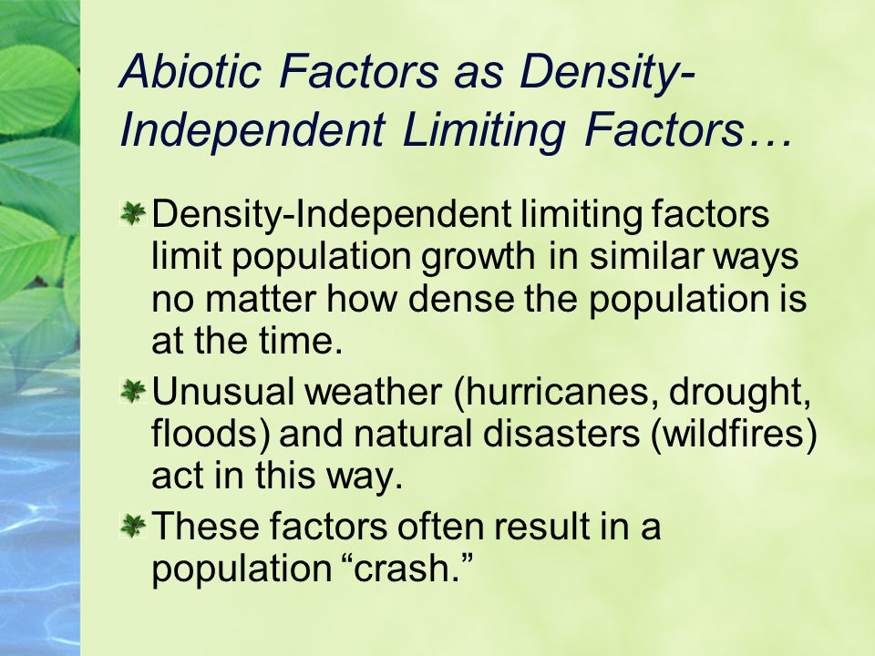 Abiotic Factors as Density- Independent Limiting Factors… Density-Independent limiting factors limit population growth in similar ways no matter how dense the population is at the time.