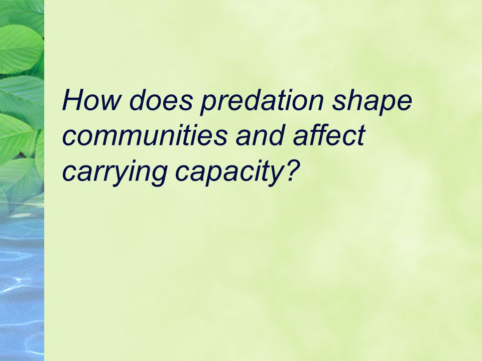 How does predation shape communities and affect carrying capacity