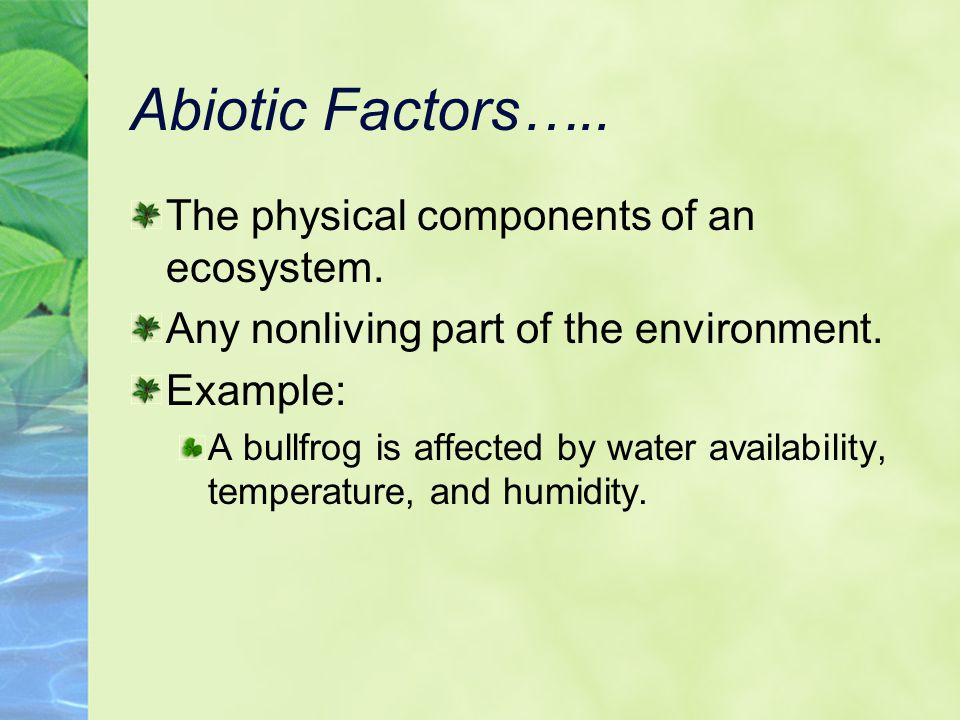 Abiotic Factors….. The physical components of an ecosystem.