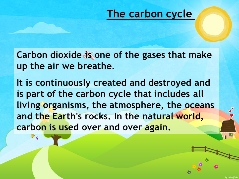 The carbon cycle Carbon dioxide is one of the gases that make up the air we breathe.