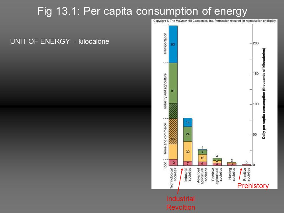 Fig 13.1: Per capita consumption of energy UNIT OF ENERGY - kilocalorie Prehistory Industrial Revoltion