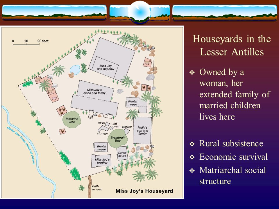 Houseyards in the Lesser Antilles  Owned by a woman, her extended family of married children lives here  Rural subsistence  Economic survival  Mat