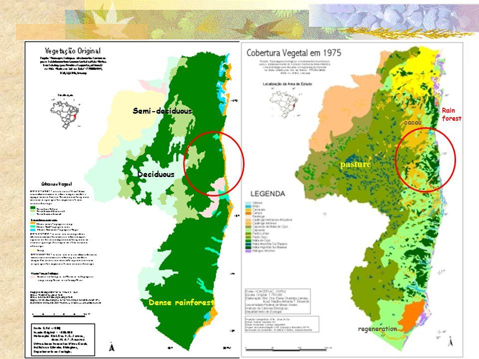 Dense rainforest Semi-deciduous Deciduous cacau regeneration Rain forest pasture