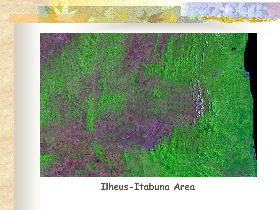 Ilheus-Itabuna Area