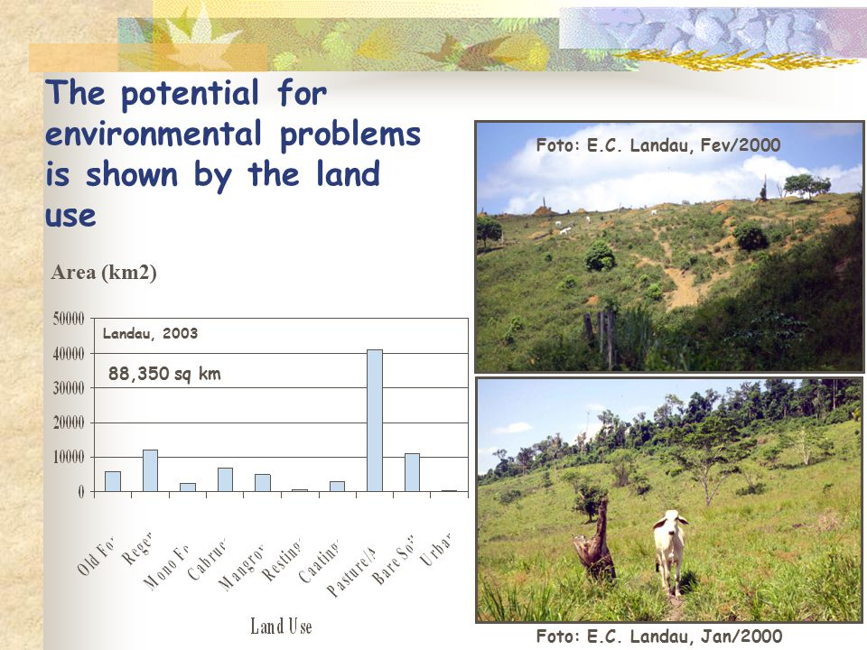 The potential for environmental problems is shown by the land use Landau, 2003 Foto: E.C. Landau, Fev/2000 Foto: E.C. Landau, Jan/2000 Area (km2) 88,3