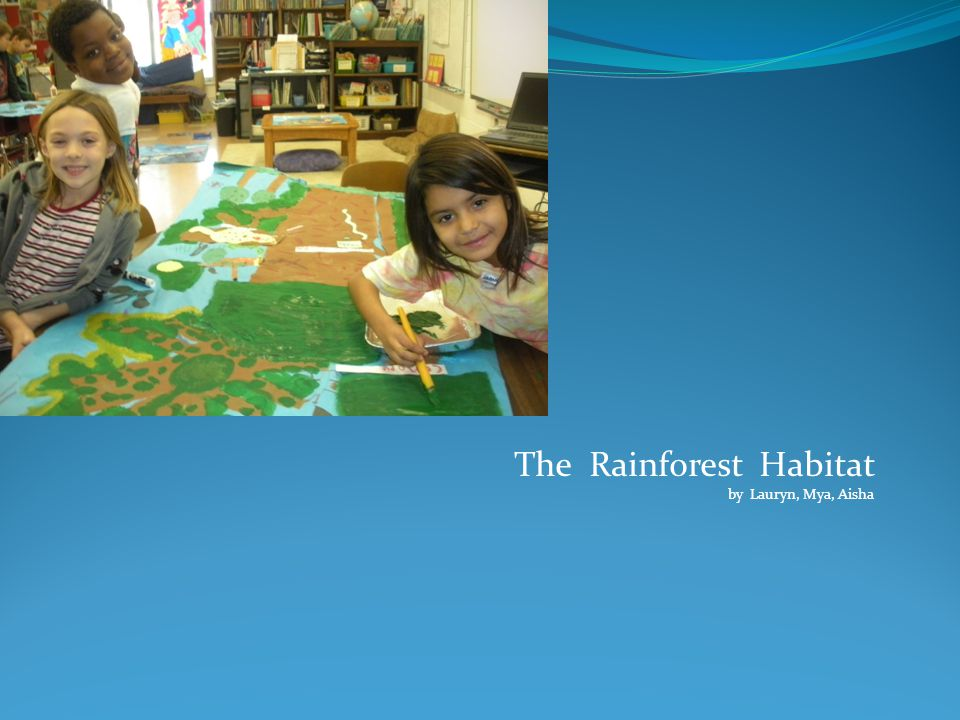 The Rainforest Habitat by Lauryn, Mya, Aisha