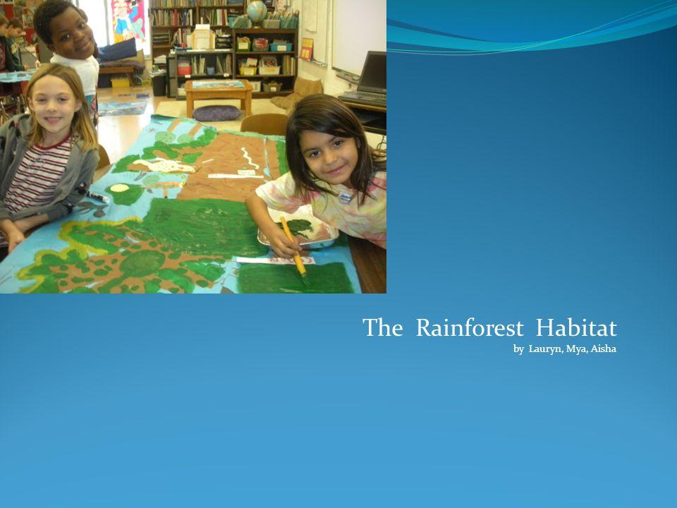 Rainforest Art Mural
