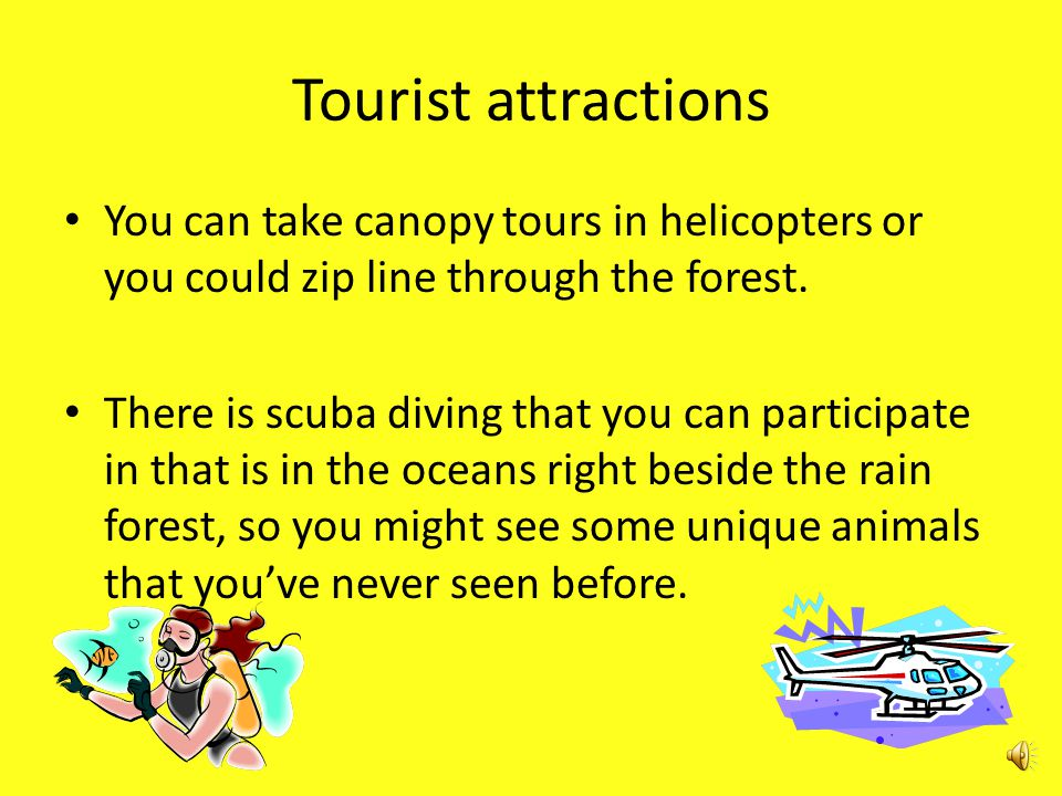 Tourist attractions The tropical rainforest is great for hiking.