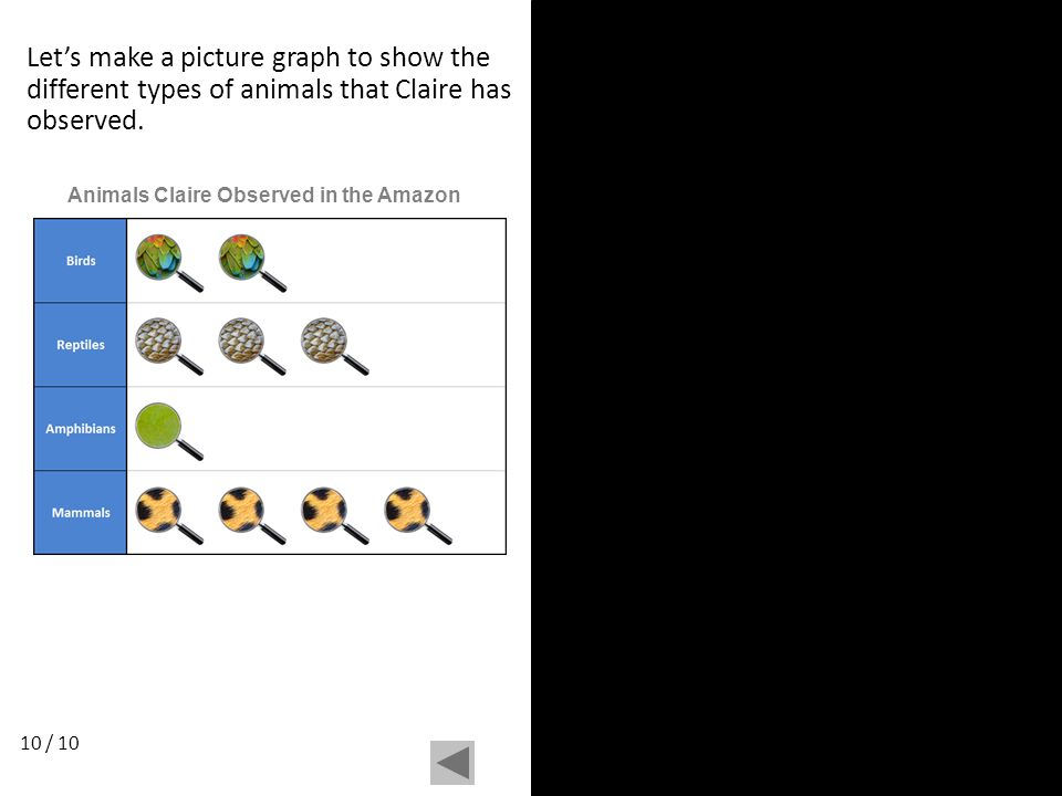 Let's make a picture graph to show the different types of animals that Claire has observed. 10 / 10 Animals Claire Observed in the Amazon