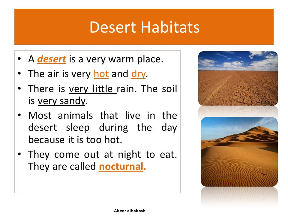 Desert Habitats A desert is a very warm place. The air is very hot and dry. There is very little rain. The soil is very sandy. Most animals that live