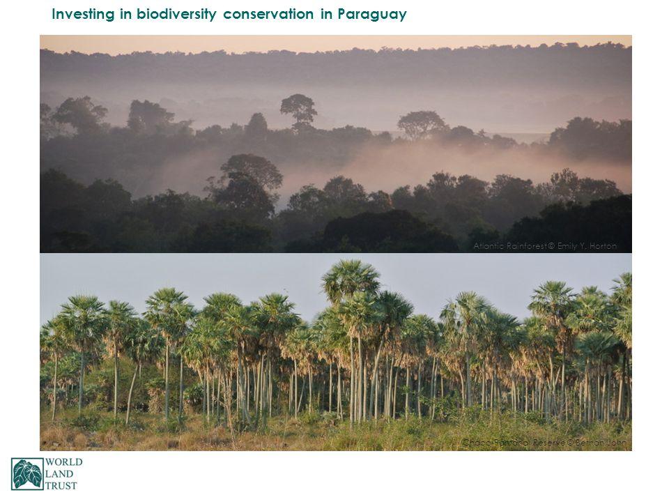 Atlantic Rainforest © Emily Y. Horton Chaco-Pantanal Reserve © Bethan John
