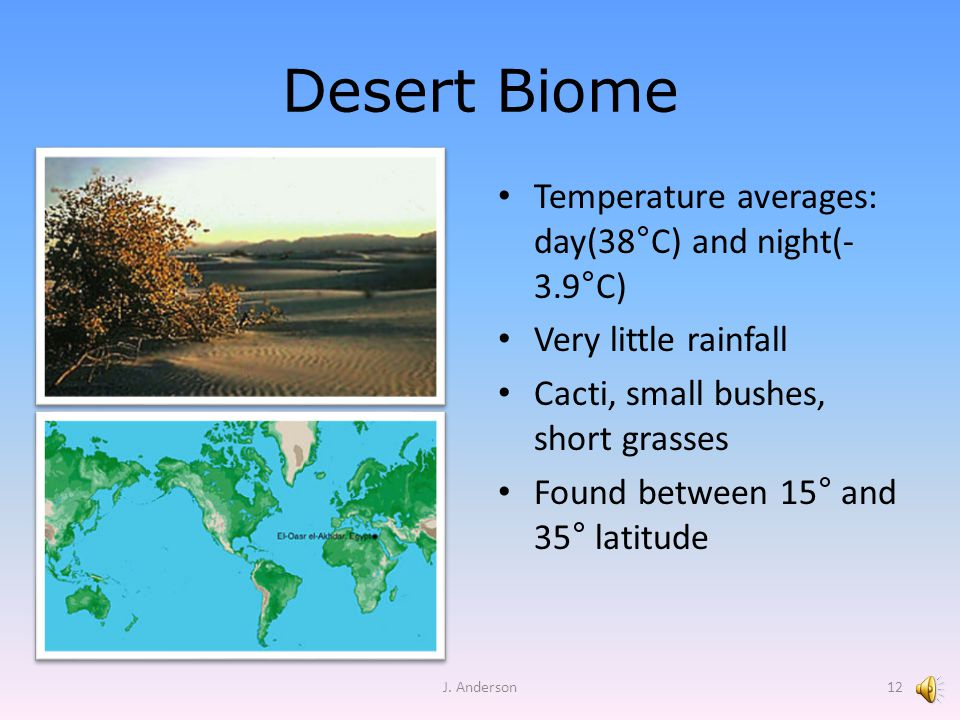 Desert Biome Temperature averages: day(38 ° C) and night(- 3.9 ° C) Very little rainfall Cacti, small bushes, short grasses Found between 15° and 35°
