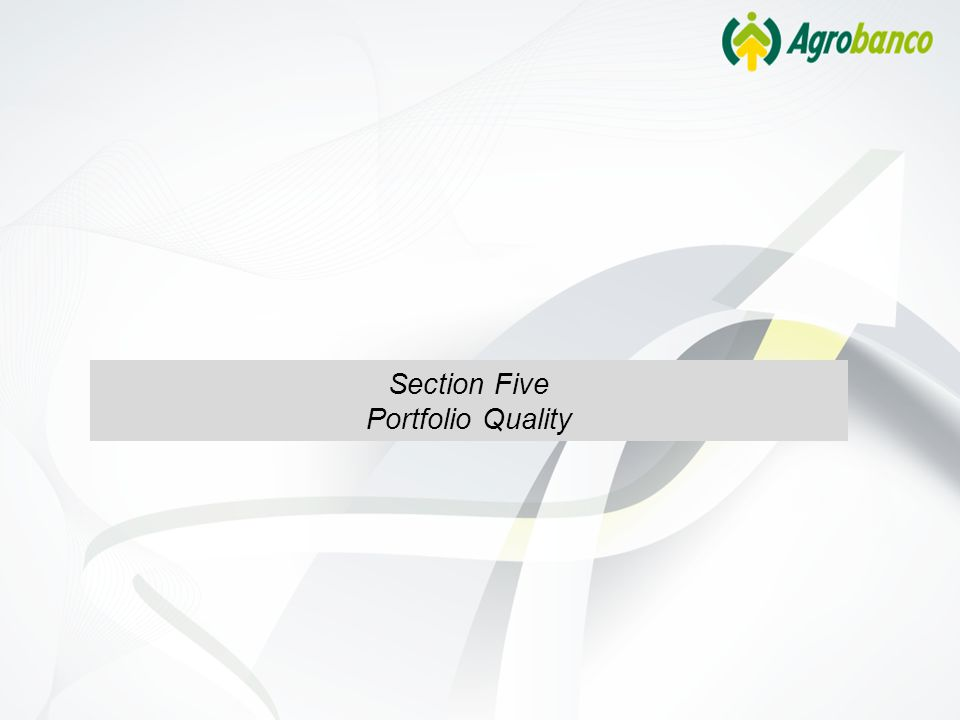 Section Five Portfolio Quality